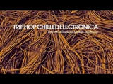 Best Trip Hop Chilled Electronica - 2 Hours of Abstract Funk Downtempo Acid Beat_low.mp4