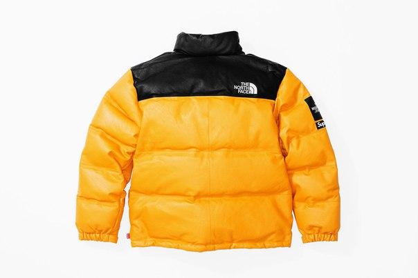 Supreme x The North Face Fall/Winter 2017 19.10 Leather Nuptse Jac