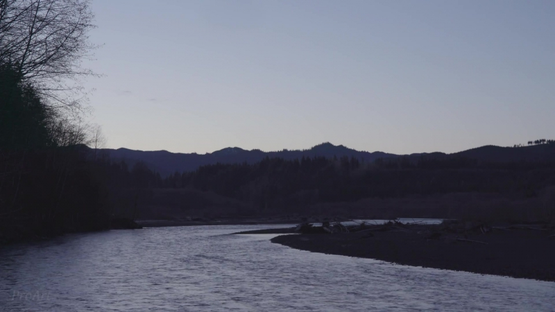 (1 Hour) River Sounds - Hoh River, Early Morning - Nature Video