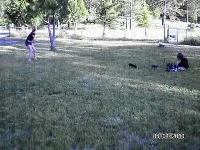 Случайные кадры нападения стаи хищников на человека · coub коуб