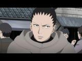 [AniCityTV.ru] Наруто: Ураганные Хроники  Naruto: Shippuuden - 2 сезон 491 серия [OVERLORDS]