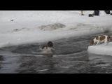Как я купалась на КРЕЩЕНИЕ! Для детей KIDS Children