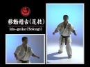Перемещение в стойках с ударами ног - Ido geiko Sokugi