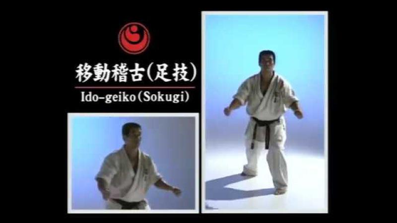 Перемещение в стойках с ударами ног - Ido geiko