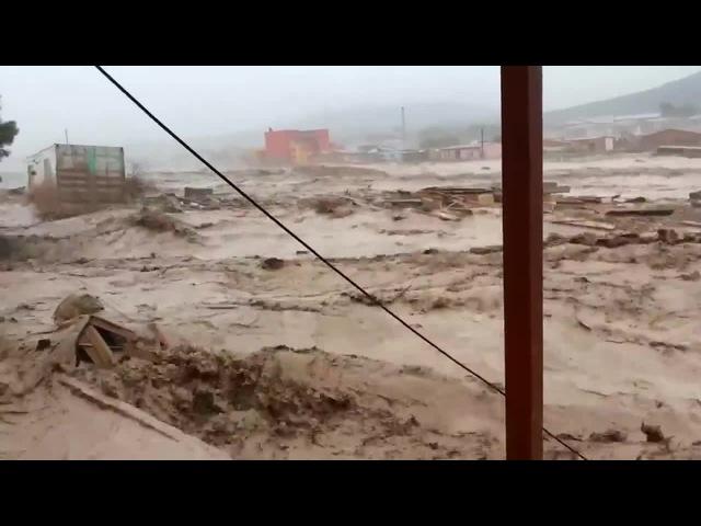 Деревня Гадюкино. Дожди.