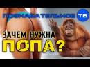 Почему вы не можете сидеть прямо Познавательное ТВ, Артём Войтенков