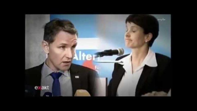 Björn Höcke AfD hat sich in der Dresdner Rede an den Satzung der AfD gehalten