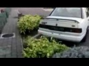 Ford sierra anti lag