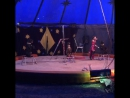 Грубая дрессировщика в цирке. Элиста. Калмыкия
