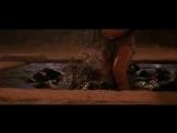 The Mummy_ Мумия l Любителям фентези и фандом