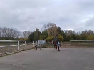доча на лошадке