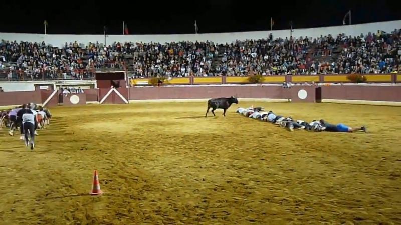 Игры с быками в Испании