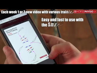 он лайн приложение от http://www.horsephysio.ch/