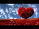 Love tree Футаж дерево любви full hd 1080