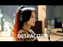 Luis Fonsi Despacito cover by