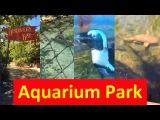 Аквариум парк в Америке. Aquarium Park USA