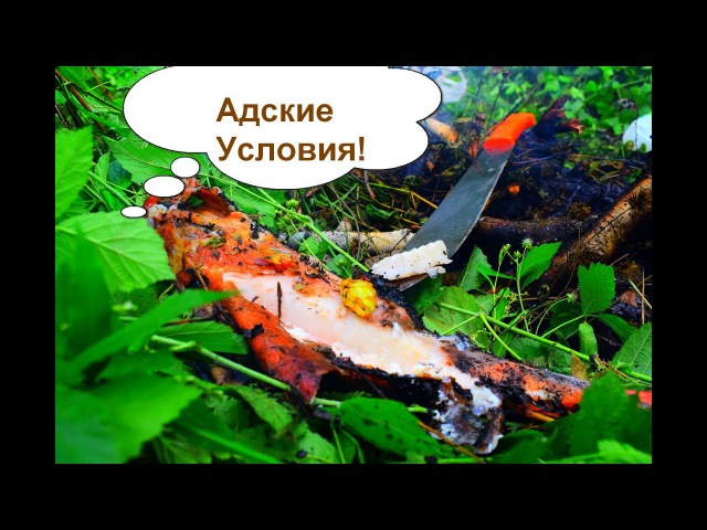 Рыба в лесу. Рыба приготовленная в дичайших условиях. Мачете, рыба, огонь.