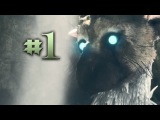 THE FEATHERED BEAST HAS ARRIVED! The Last Guardian - Part #1