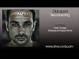 Yahel - Voyage(Didrapest Vs. Prospect Remix)
