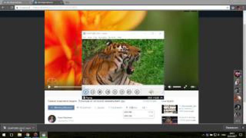 Видеоурок как скачать видео ВКонтакте Відеоурок як скачати відео ВКонтакті