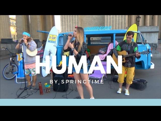 Rag'n'Bone - Human (cover by Springtime) - Live street performance