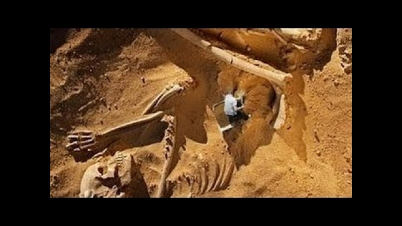 Best 2017 HD Petra Lost City of Stone History Channel Documentaries new 2017 - The Best Documentary