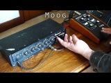 Analogue Delay Comparison Ibanez AD-150 Vs. Moog 104Z