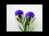 ABC TV How To Make Carnation Flower From Crepe Paper - Craft Tutorial