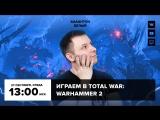 Фогеймер-стрим. Антон Белый играет в Total War: Warhammer 2