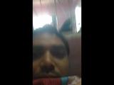 Shailesh K-Pandey - Live
