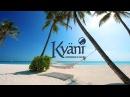 Как строить бизнес с Kyani Сколько можно заработать в Kyani
