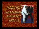 Steve Sexton Hapkido Volume 2 of 3