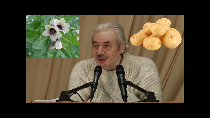 Освободиться от последствий ГМО цикл замены тканей картофель диабет ананас банан Левашов Н В