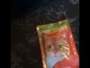 Прохвост и кот фаршмак