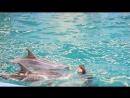 Прыжок Игоря Каверзина и стойка на одном дельфине Натальи Каверзиной