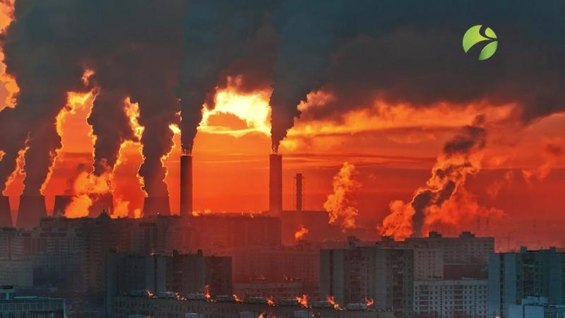 ЦОК - Изменение климата (1)