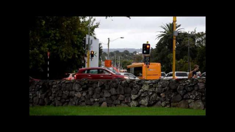 Утром на работу пейзажи Новой Зеландии
