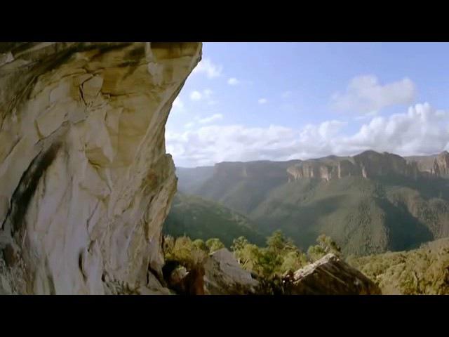 Удивительный мир! Дикая природа. Австралии Д.Ф