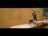 ЧЖАН ИСИН: 170418 Доспехи бога: В поисках сокровищ (дублированный трейлер)