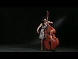 Sanzhara double bass Saint-Saens Swan