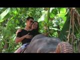 Наша Love story & Приключения на Шри Ланке