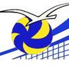 Федерация волейбола г.Североморск
