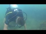 погружение с аквалангом в Дивноморске
