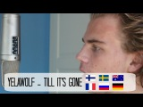 Yelawolf - Till It's Gone (Cover Sung In Different Languages by Sebastian Mellblom)