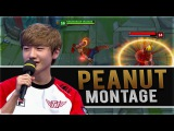 PEANUT Montage - The Lee Sin PlayMaker League Of Legends Montage