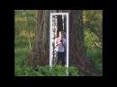 Walking Through a Mirror Illusion