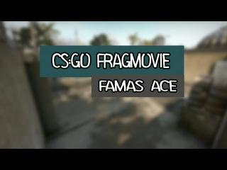 CS:GO Fragmovie FAMAS ACE LDK LocK