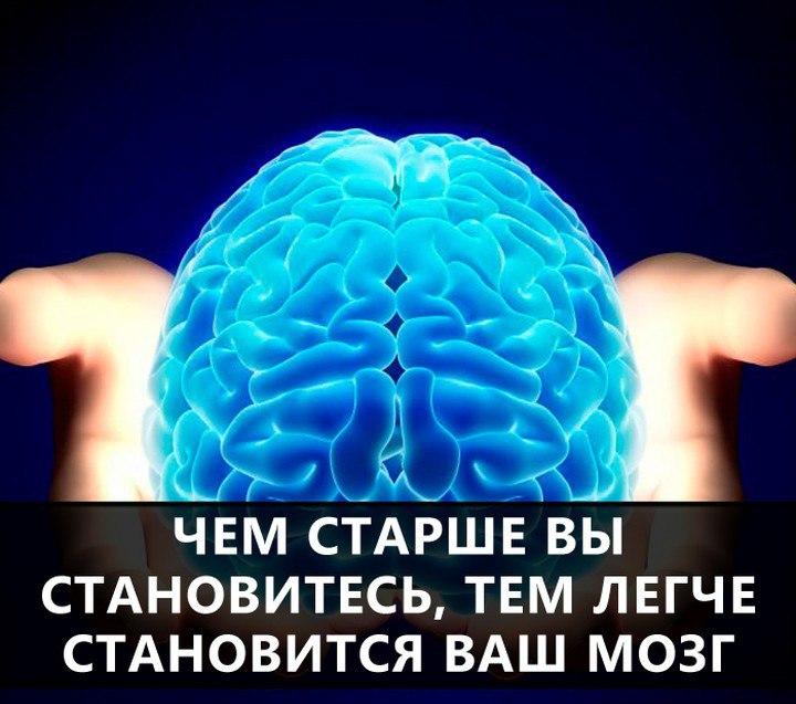 Анекдот Про Мозг