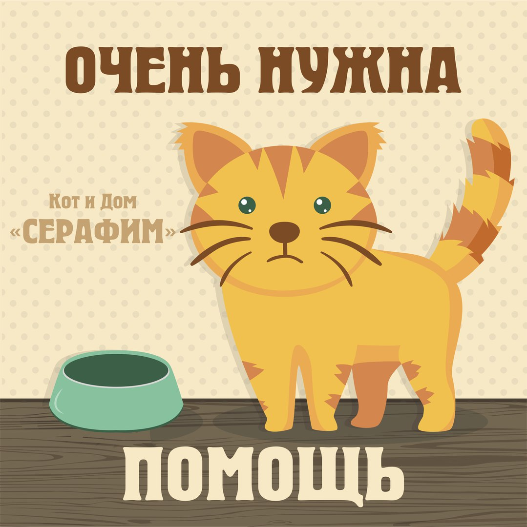 спасите котенка картинка признал вину