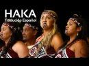 HAKA - Baile en una Boda - con subtítulos en español